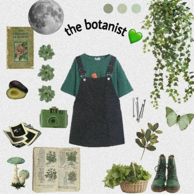 #freetoedit #greenaesthetic #green #aesthetic #edit #botanical #botany #aestheticedit #greenminimalism #leaf #png