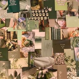 greenaesthetic green plant planets leaves chill vibes vibecheck keyboard books wallpaper sticker freetoedit