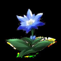 attackontitan aot flower anime manga japanese japan blue attack on titan aesthetic freetoedit