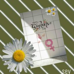 freetoedit internationalwomensday happywomensday womensday madewithpicsart myedit
