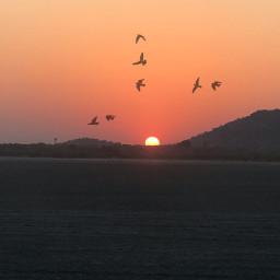 freetoedit sunset travel nature photography