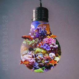 freetoedit surreal surrealism light fish ocean lamp