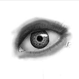 procreate eye eyedrawing graphitedrawing procreatedrawing art artist