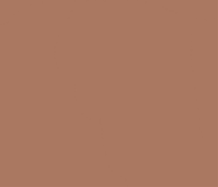 #brown #brownaesthetic #darkacademia #lightacademia #chocolate #cookie #cookies #chocolatecookies #background #solidcolor #brownbackground #pinterest #freetoedit #dark #light #blm #blmmovement