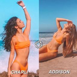 charlifanpage addisonfan