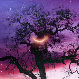 tree clouds sky moon evening psychedelic beautiful colors heypicsart makeawesome vibes stayinspired purpleaesthetic purple