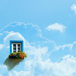 cloudsandsky bluesky blueaesthetic madewithpicsart picsartedit picsart windows flowers shine mychemicalromance madebyme