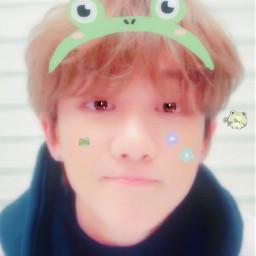 seventeen the8 minghao frog kawaii