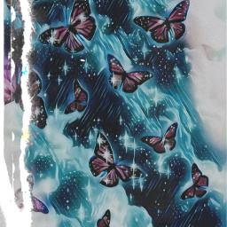 15followers butterfly galaxy freetoedit