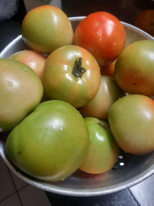 #tomato