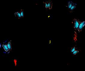 butterflys freetoedit