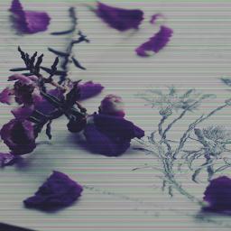 purple badtv aesthetic