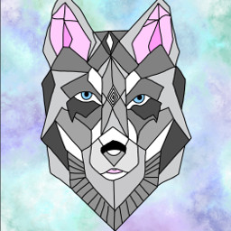 wolf gray graywolf procreate aesthetic colorful blueeyes blueeyedwolf multicolored geometric kindacutethough