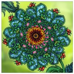 flower mandala pattern background freetoedit
