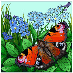 flowers butterfly forgetmenots peacockbutterfly freetoedit