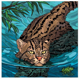 bigcat wildcat bobcat freetoedit