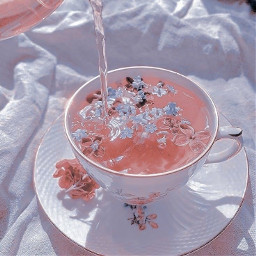 sweet sweetmills cottagecore lightcottagecore aesthetic pinkcottagecore pink pinkaesthetic pastel pretty drink flower flowers tea teatime