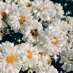flower glitter aesthetic freetoedit floweraesthetic