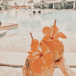 cocunut hands house water pool beach people freetoedit