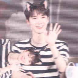 ten nct wayv amkitty meow