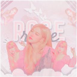 rose roseblackpink roseedit roseontheground blackpink blackpinkedit kpop kpopedit kpopidol