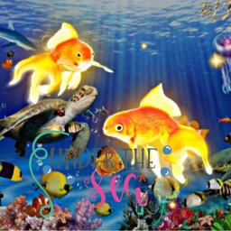 freetoedit ocean sea underwater marinelife seacreatures blue colourful quote water underthesea ninahayess srcgoldenfish goldenfish