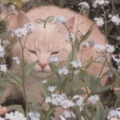 imliterally_a_flower