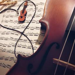 photography music violin