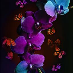 butterflies butterfly monarch monarchbutterfly flower freetoedit ecdreamstickersbackground dreamstickersbackground