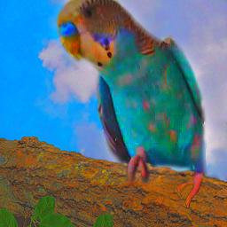 freetoedit picsart bird pericos edit editedbyme challenge fotografia pccolorsisee colorsisee birds blue animals pets mascotas followme fotography