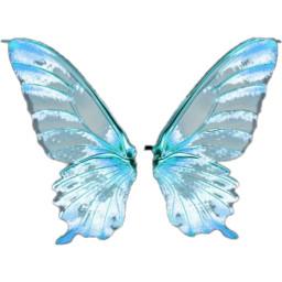 freetoedit butterflywings