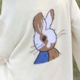 aesthetic bunny