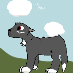 wolf draw ibispaint