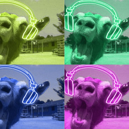 freetoedit goat colourful popart headphones funny crazy cool ninahayess