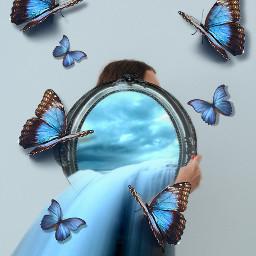 challengewinner mirror mirroredit butterflies freetoedit