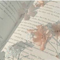 book aesthetic soft