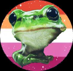 lesbian frog pfp freetoedit