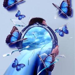 picsart picsartchallenge mirror butterfly didi_ban_ban freetoedit rcbrokenglasseffect brokenglasseffect