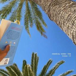 summer vibes aesthetic readingunderthetrees ❤️bye readingunderthetrees