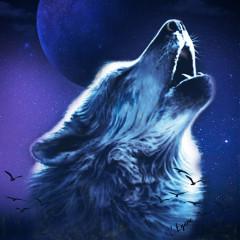 wolfie-life