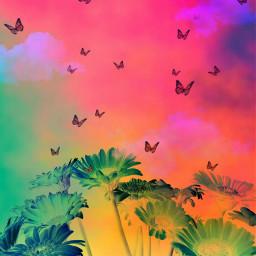 remix paradise freetoedit