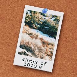 freetoedit 2020winter winter poloroid