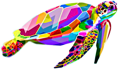 tortle tortles tortuga tortugas neon neonanimals animales tortugamarina tortugab tortugaisland freetoedit