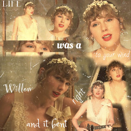 taylorswift folklore evermore willow