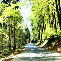 outdoors nature naturelover road green myedit remixed freetoedit