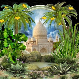 freetoedit emput cover islam islamic_art flower