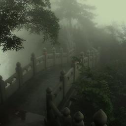 freetoedit darkaesthetic darkacademia forrest japan calm ksjsjsj