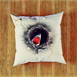 challengeoftheday pillow shark freetoedit picsart ircdesignthepillow2021 designthepillow2021