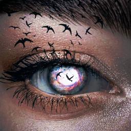 eye eyebrows eyelashes galaxy birds beautiful freetoedit local srcgalactichole galactichole