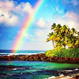 freetoedit hawaii northshore